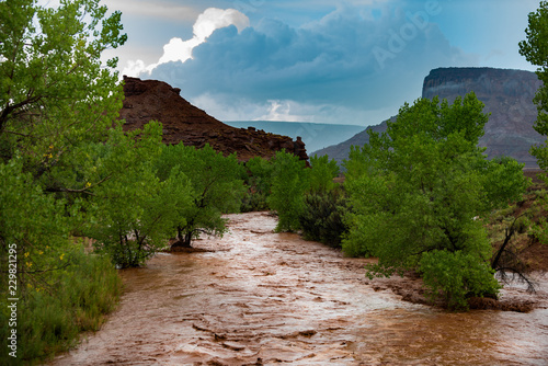 Slika na platnu Flash Flood Waters flows through the Canyonlands Needle District Utah USA