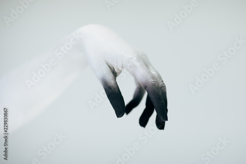 Photo  Creepy Halloween monster hand with white and black make up in front of white bac