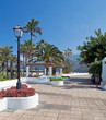 Walk with palm trees and white seats in the Spanish town of Puerto de la Cruz in Tenerife