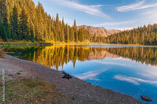 Fotografie, Obraz  Small Forest Lake.Glacier National Park.Montana.USA