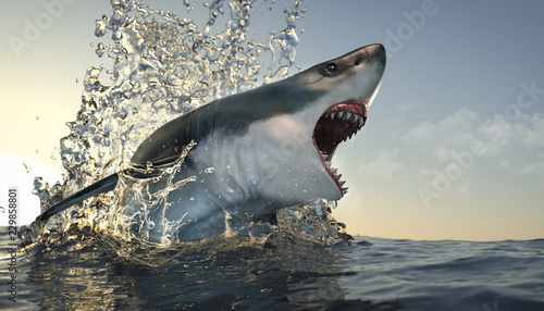 Fotografie, Tablou  Great White Attack Run