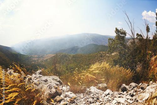 Fotobehang Wit summer landscape