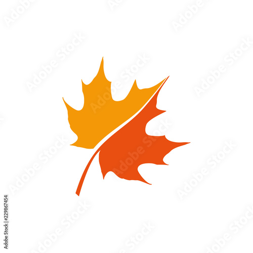 Fototapeta maple leaf logo icon design template vector