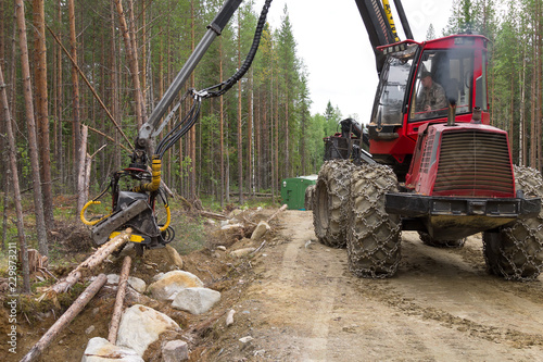 Photo Stands Motor sports Harvester machine working in a forest, chopping young pine trees. Wood industry, Northern Karelia, Russia