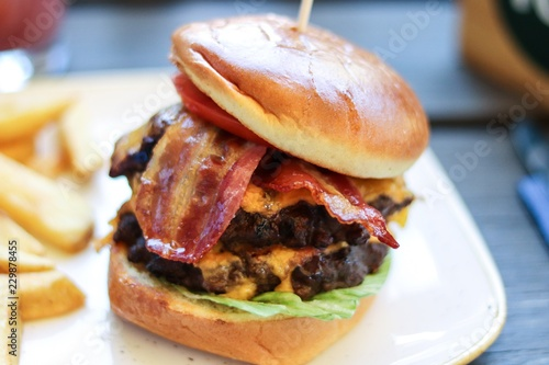Obraz na plátně Burger