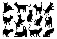 A Cat Silhouettes Pet Animals ...