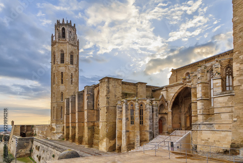 Foto op Canvas Monument Old Cathedral of Lleida, Spain