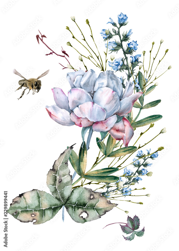 Composition of roses with wild flowers and bees. Isolated on white background.