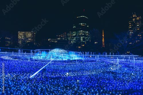 Fotografía  Tokyo midtown illumination