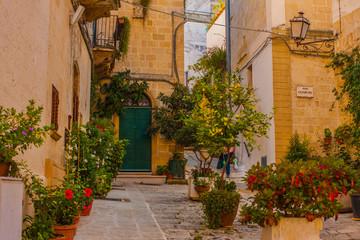 Fototapeta na wymiar città vecchia in fiore