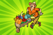 Autumn Harvest. Farmer, Man Wi...
