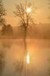 winterlicher Morgen am Weiher