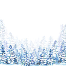 Winter Forest Background With Fir Trees Under Snow. Watercolor Illustration On White Background.