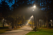 Autumnal Alley In The Park At Night In Konstancin Jeziorna, Mazowieckie, Poland
