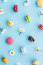 Macaron And Daisy Background