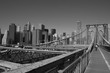 Look at New York from brooklyn bridge / USA