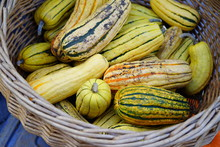 Basket Of Striped Yellow And Green Delicata Squash In The Fall