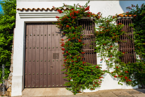 Fotobehang Zuid-Amerika land The beautiful colonial houses at the walled city of Cartagena de Indias