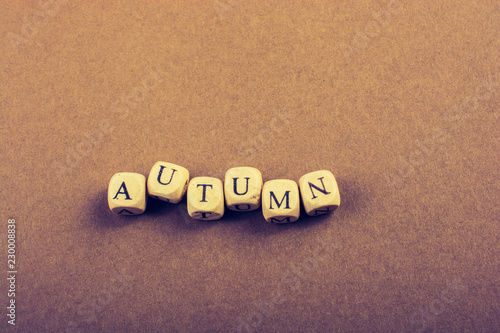 Fotografie, Obraz  Autumn fall composition or concept and word Autumn