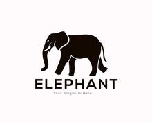 Walking Elephant Logo, Icon, S...