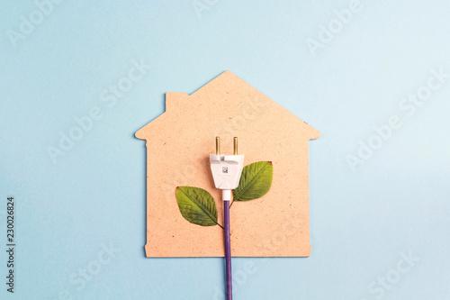 Leinwand Poster House symbol with plug like a plant on a blue  background