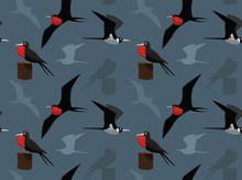 Bird Frigatebird Wallpaper