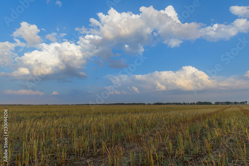 Fotobehang Cultuur Sloping field and blue sky with clouds.