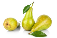 Three Pears With Green Leaves ...