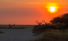 Sonnenuntergang In Der Nähe Vom Namutoni Camp