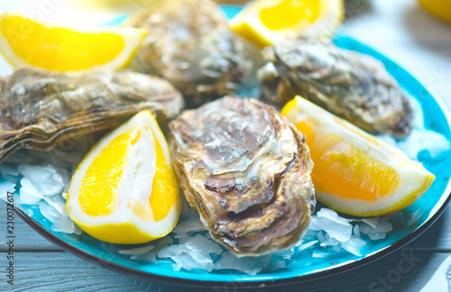 Fresh Oysters closeup on blue plate, served table with oysters, lemon and ice. Healthy sea food. Oyster dinner in restaurant. Gourmet food
