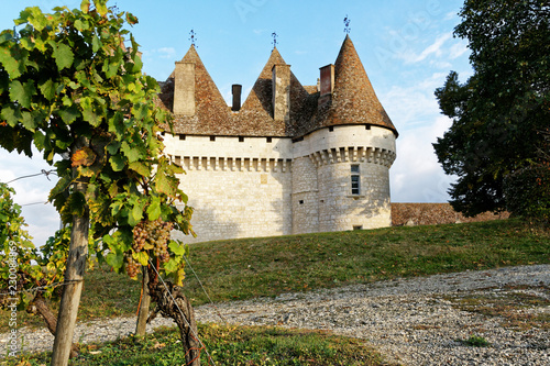 Foto op Aluminium Kasteel Vignoble château