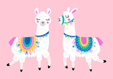 Cute Llama Set For Design. Chi...