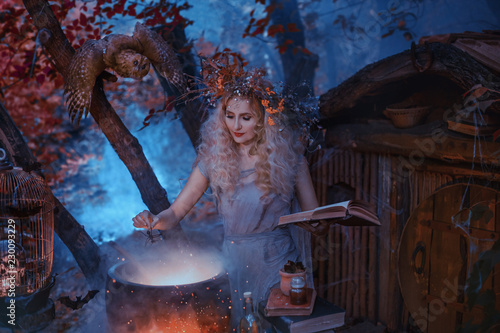 Tablou Canvas atmospheric cold autumn photo in art processing, a good witch creates a magic el