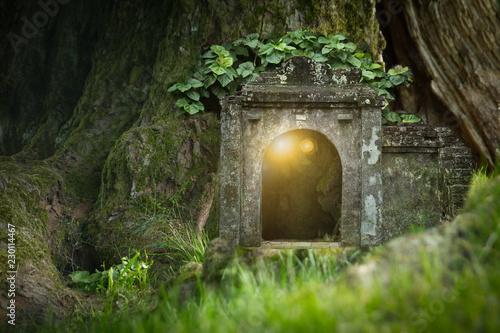 magiczny-dom-w-lesie