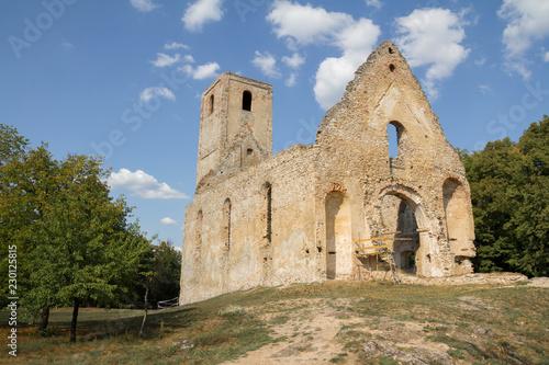 Foto op Aluminium Rudnes ruins of ancient monastery
