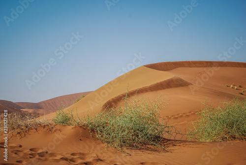 Photo  Wüstensand