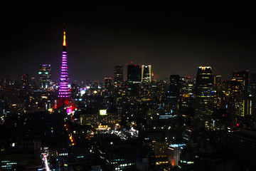 Fototapeta Aerial view over Tokyo tower and Tokyo cityscape view from Tokyo World Trade Center at night, Tokyo, Japan.