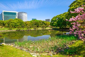 Fototapeta Modern skyscrapers of Shiodome in Shimbashi district reflection in Hamarikyu Gardens lake. Hama Rikyu is a large, attractive landscape garden in Tokyo, Chuo district, Sumida River, Japan.