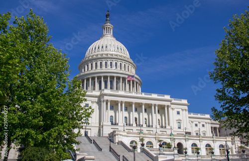 Fotografia, Obraz  united states capitol building in washington dc