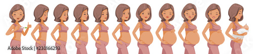 Fotografiet Pregnancy Stages set