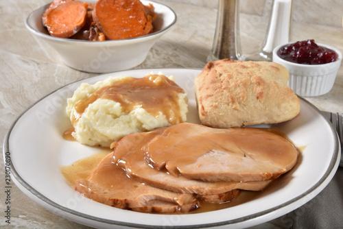 Fotografie, Obraz  Gourmet sliced turkey dinner