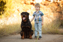 Cute Little Baby And Big Dog B...