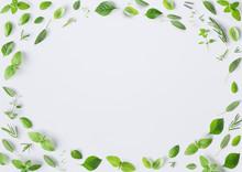 Seamless Pattern Of Fresh Herb...