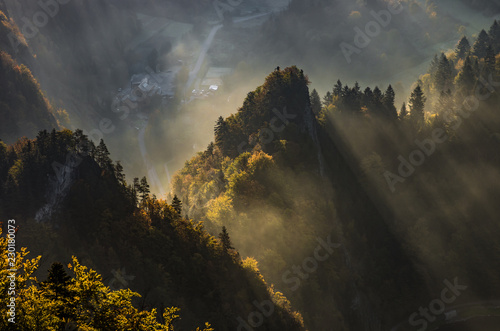 Foto op Aluminium Oranje Misty mountain forest landscape in the autumn morning, Poland