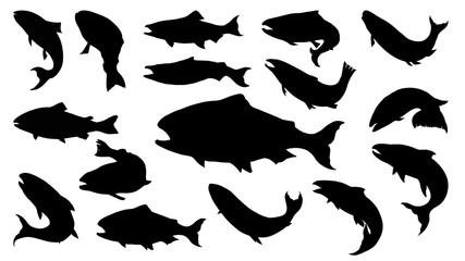 Set silueta lososa u linijskom umjetničkom stilu. Vektor ribe ručno crtanje. Tetovaža ribe na bijeloj pozadini. Vektor crne i bijele ribe na bijeloj pozadini. Skica ribe lososa za bojanku.