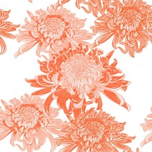 Seamless Background With Orange Japanese Chrysanthemums And Ornament On White Backdrop. Inscription Autumn Garden Of Chrysanthemums.