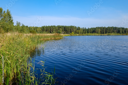 nature reflections in clear water in lake or river at countryside