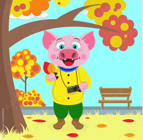 La pose en embrasure Ours Funny pig pictures of leaves in autumn Park. Vector illustration on the theme of autumn.