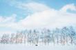 Leinwanddruck Bild - 비에이 마일드세븐 언덕
