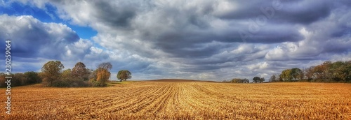 Fotografia, Obraz Farmfield rows & clouds
